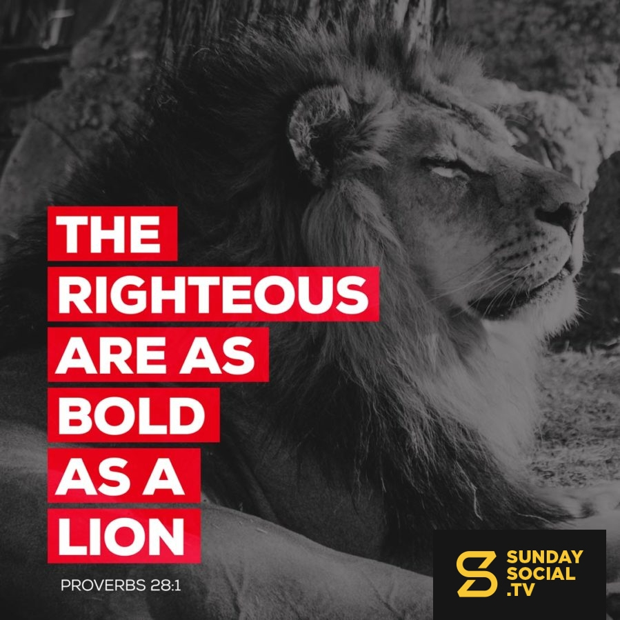 The righteous are as bold as a lion  - Proverbs 28:1
